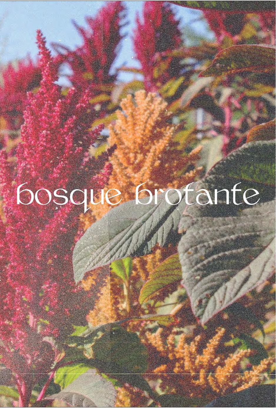 bosque_brotante_cover – Lois Klassen-page-001